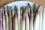 Perfect White Asparagus